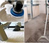 sofa shampoo carpet shampoo