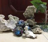 Colourful rock shapes- 5/10 dhNice shape with holes for fish movement -White solid marine rock above