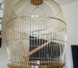 golden Bird Cage in good condition