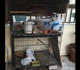 I have 2 pegion cage for sale each cage 100 total 200