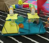 Hamster cage with lots of accessories and food.!!! It included 2 hamsters aswell for adaption.. Need