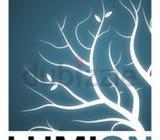 Lumion Classes in Show Phone Number or WatsUp // UAE ?? - REVIT BIM ARCHITECTURE MEP STRUCTURE AutoC