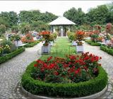 SHAHEEN LANDSCAPING Show Phone Number AND GARDANif you required new gardan and landscapingfor your n