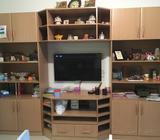 Wall Unit - Without tv or any other items