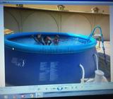SWIMMING POOL IN VERY GOOD CONDITION USED ONLY FEW DAYS AND PACKED IN THE BOX DUE TO SHIFTING IN THE