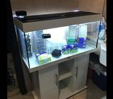 Juwel 180 Rio fish tank with protein skimmer and filter tower. Comes with numerous extra sponge filt