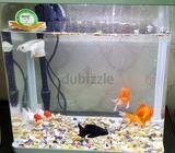 Acrylic Fish tank with LED light for sale with all the accessories but with out fishes. Hardly 20 da