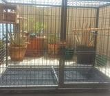 Black cage for birds High 0.84 mtsWidth 1.10 mtsDepth 0.70 mts