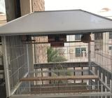 Big cage for birds good for mix birds aviary or colony, used few months only reason for selling movi