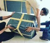 PROFESSIONAL HOUES FURNITURE MOVERS PACKERS & SHIFTERS 050 34 49 740