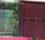 Fish tank, aquarium 80cm with stand&external filter