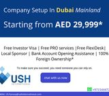 Business set up in UAE