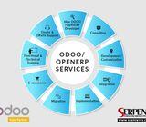 Odoo Integration,Odoo ECommerce Integration | Odoo ERP Integration