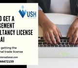 How to get a Management Consultancy License in Dubai?