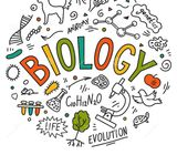 Online Biology Classes Available by Indian Female Teacher