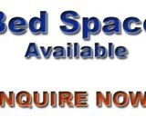 Bed Spaces Available For Muslims AED 350